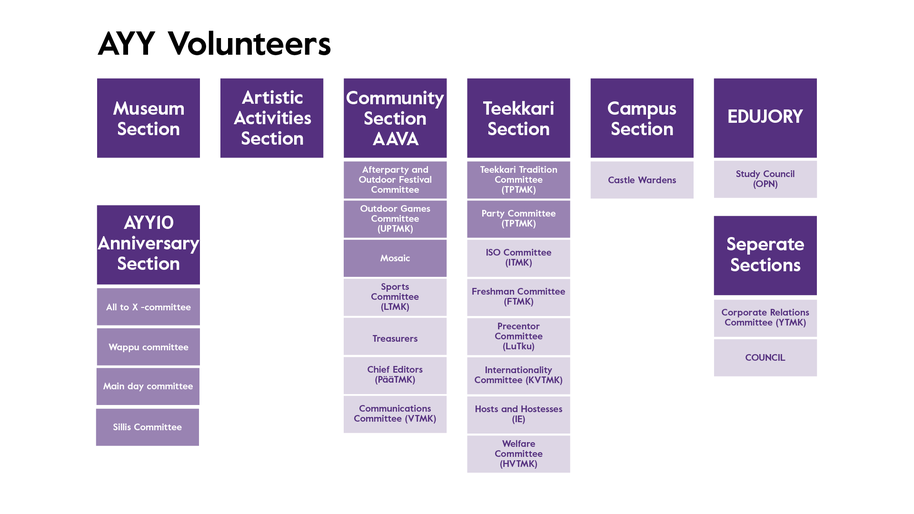 Chart of AYY volunteers